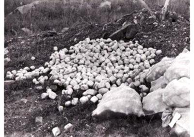 13 jasper stone grinding media